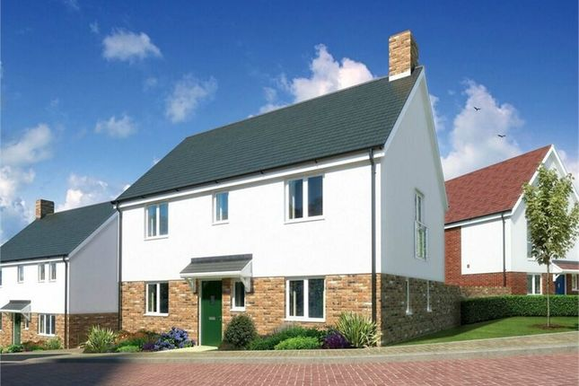 Thumbnail Detached house for sale in Nursery Rise, Waltham Abbey, Essex