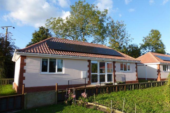Thumbnail Bungalow to rent in Church Lane, Shipdham, Thetford