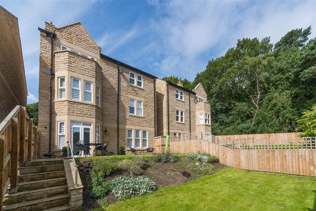 Thumbnail Detached house to rent in Beech Close, Harrogate, North Yorkshire