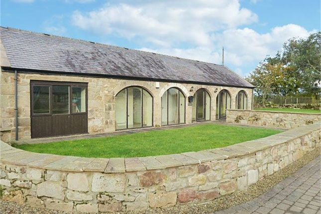 Thumbnail Detached bungalow for sale in Street Houses, Corbridge
