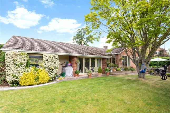 Thumbnail Detached bungalow for sale in Cuxham, Watlington