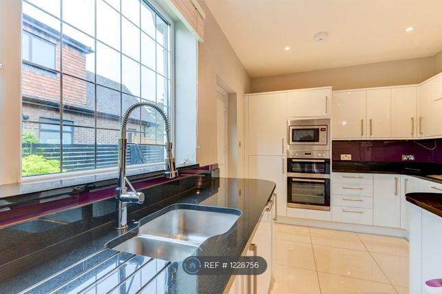 Thumbnail Detached house to rent in Court Close, Brighton