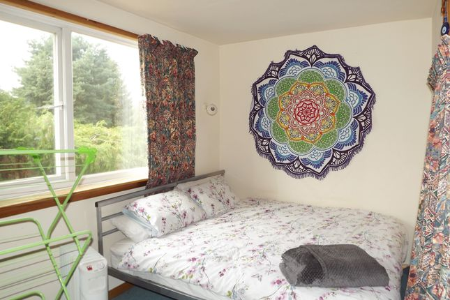 Thumbnail Detached house to rent in Junction Road, Lightwater GU18, Lightwater,