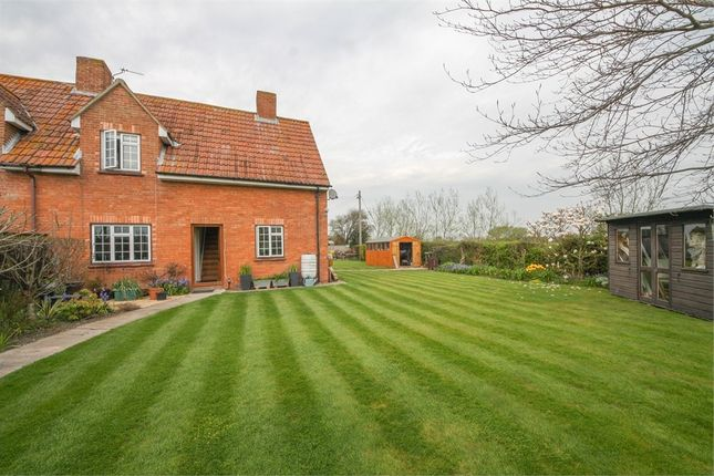 Thumbnail Cottage for sale in 2 Withy Grove Cottages, Withy Grove, East Huntspill, Somerset