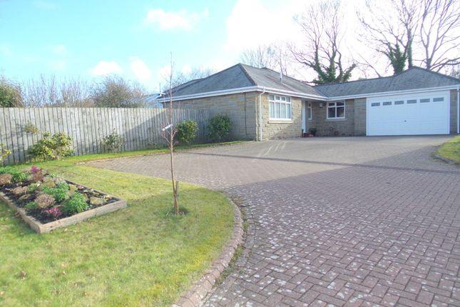 Thumbnail Detached house for sale in The Grange, Nedderton Village, Bedlington