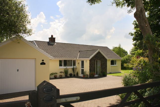 Thumbnail Detached bungalow for sale in The Gail, Llangwm, Haverfordwest