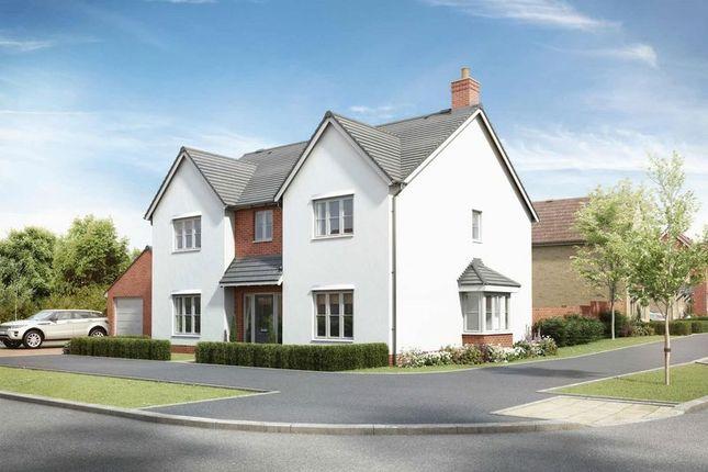 Thumbnail Detached house for sale in Handley Gardens, Maldon, Plot 28