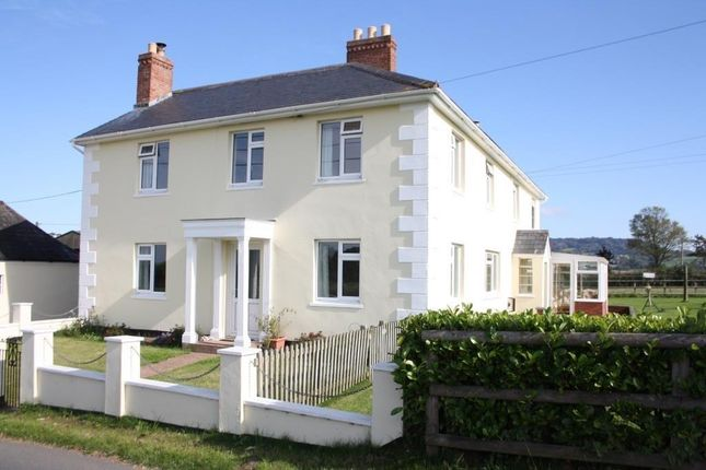 Thumbnail Detached house for sale in Barrow Road, Payhembury, Honiton