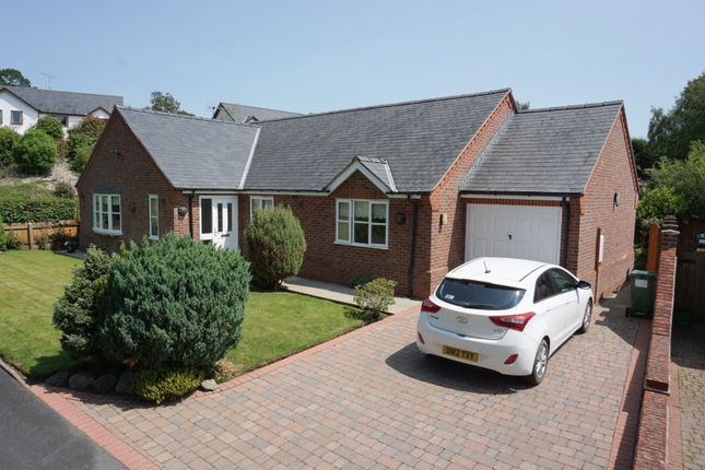 Thumbnail Detached bungalow for sale in Garingay, 1 Oak Court, Pontrobert