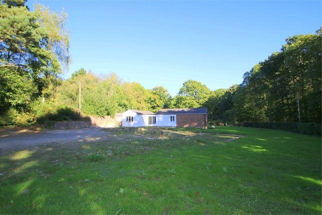 Thumbnail Detached house for sale in Cranbrook Road, Biddenden, Ashford