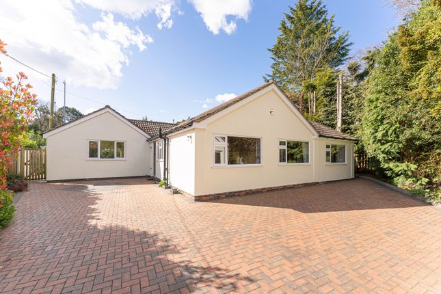 Thumbnail Detached bungalow for sale in Grove Road, Knowle, Solihull