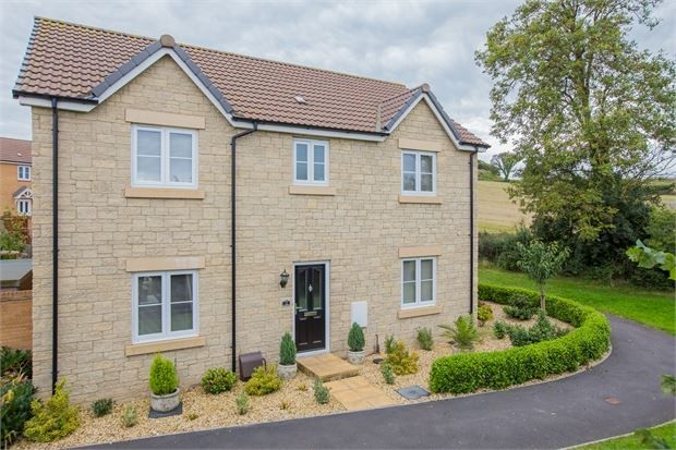 Thumbnail Detached house for sale in Orchard Grove, Newton Abbot, Devon.