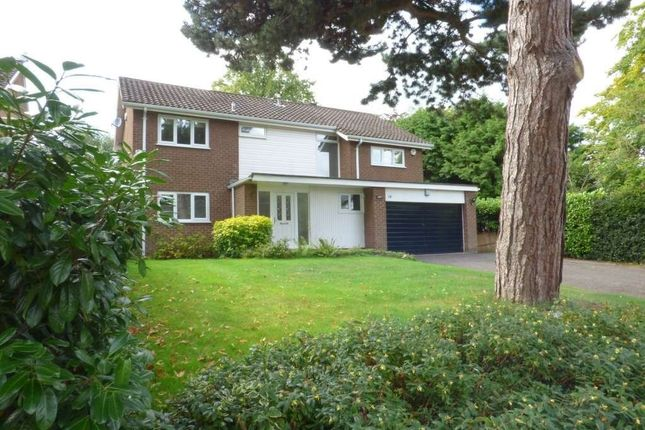 Thumbnail Detached house to rent in 14 Fulshaw Pk, W/S