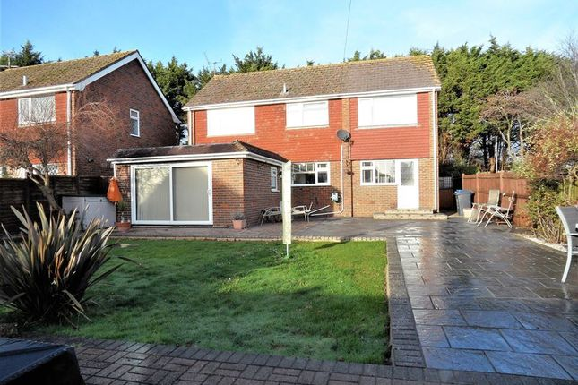 Thumbnail Detached house for sale in Teign Walk, Worthing