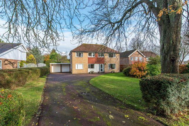 Thumbnail Detached house for sale in Woodcote Park Avenue, Purley