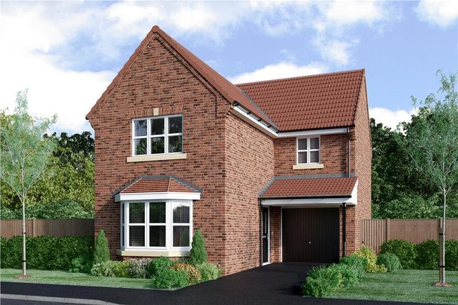 "Thumbnail Detached house for sale in ""Malory"" at Milby, Boroughbridge, York"