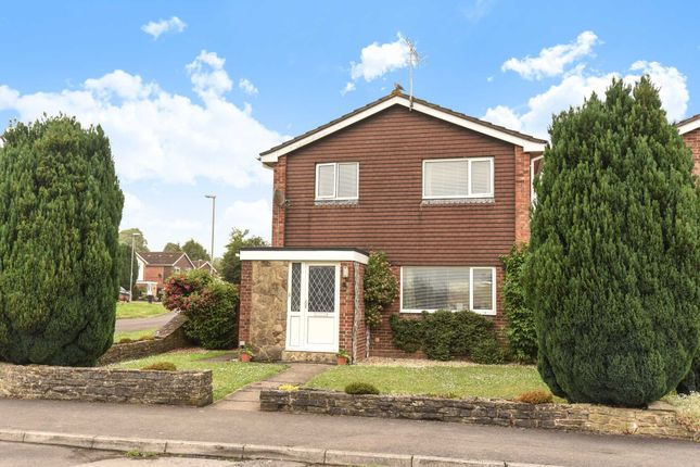 Thumbnail Detached house for sale in Hambledon Gardens, Blandford Forum