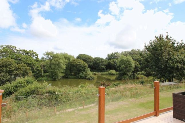 Thumbnail Lodge for sale in White Cross, Newquay