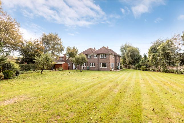 Thumbnail Detached house for sale in West Way, West Broyle, Chichester, West Sussex