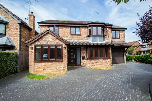 Thumbnail Detached house to rent in The Chase, Great Amwell, Ware