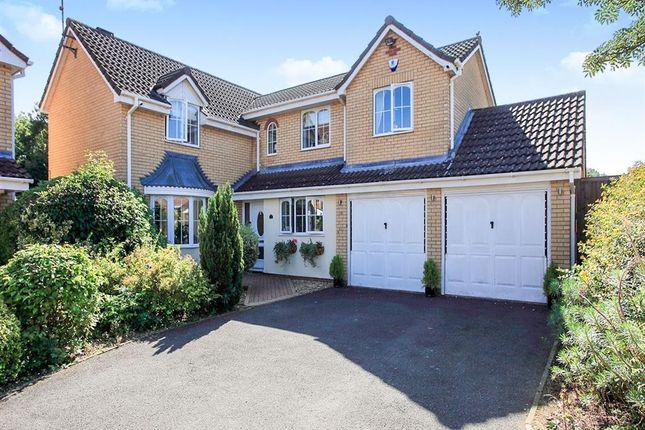 Thumbnail Property to rent in Kilverstone, Werrington, Peterborough