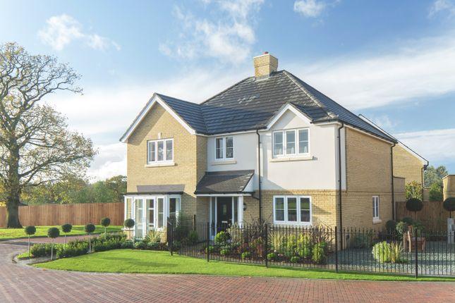 Thumbnail Detached house for sale in Oak Tree Road, Knaphill, Woking