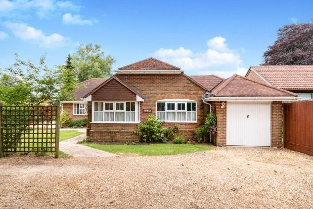 Thumbnail Bungalow to rent in Old Haslemere Road, Haslemere