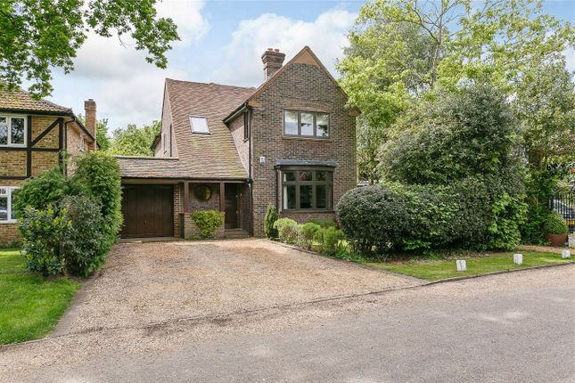 Thumbnail Detached house to rent in Ivy Lane, Woking