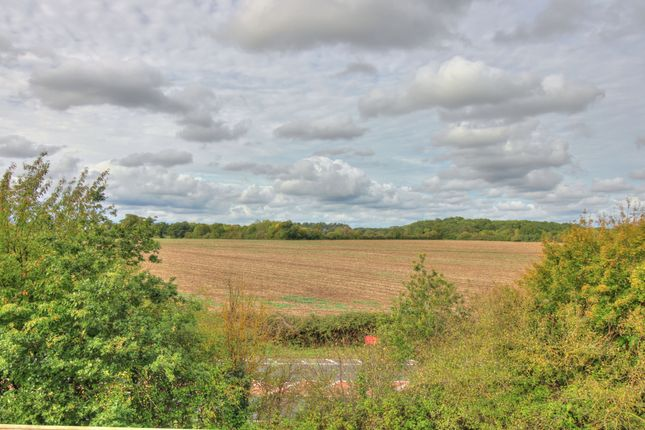 Views of Montagu Drive, Saxmundham IP17