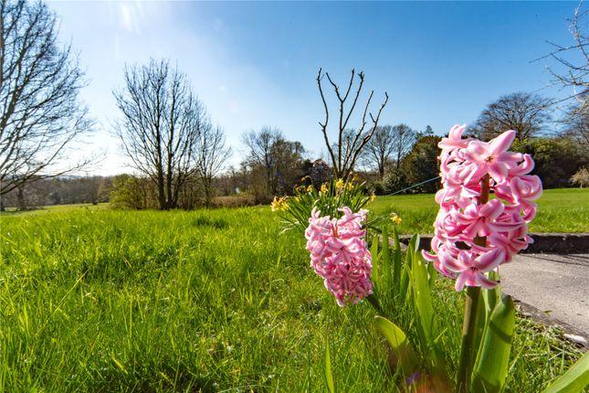 Gardens of Limb Lane, Dore, Sheffield S17