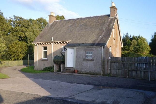 Thumbnail Cottage to rent in Coupar Angus, Blairgowrie