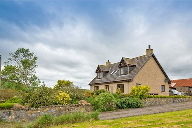 Thumbnail Detached house for sale in Culsalmond, Insch, Aberdeenshire