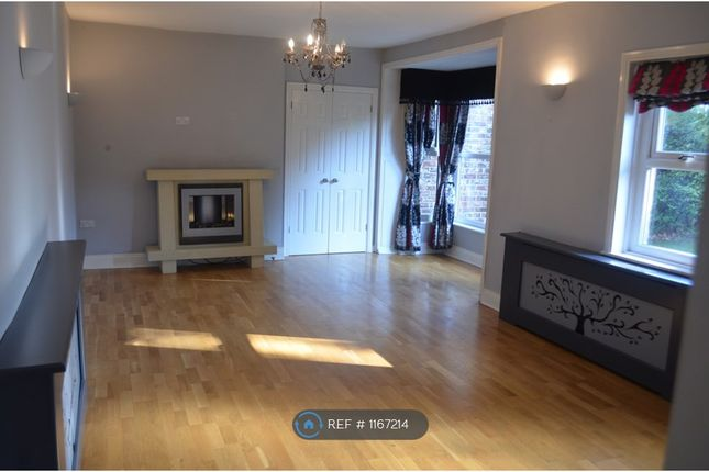 3 bed semi-detached house to rent in Albert Rd, Stockton On Tees TS16