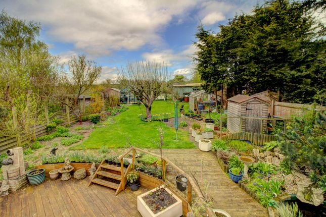 Thumbnail Bungalow for sale in Orchard Estate, Eggington, Leighton Buzzard