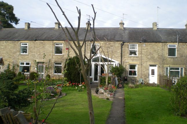 Thumbnail Terraced house for sale in Wear Terrace, Bishop Auckland, County Durham