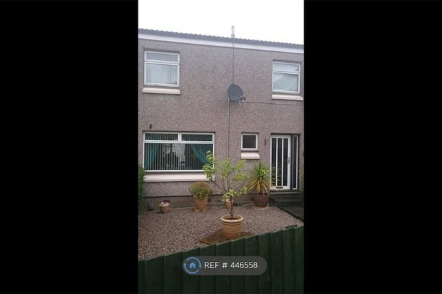 Thumbnail Terraced house to rent in Brodick Place, Falkirk