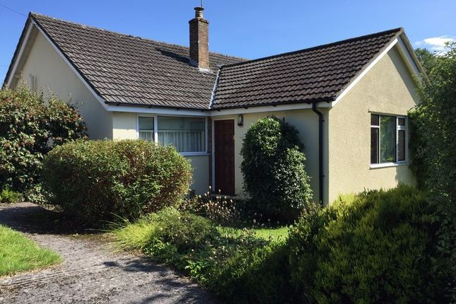 Thumbnail Detached bungalow to rent in Hay Hill, Croscombe, Wells