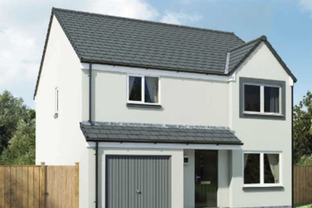 """Thumbnail Detached house for sale in """"The Balerno """" at Arbroath"""