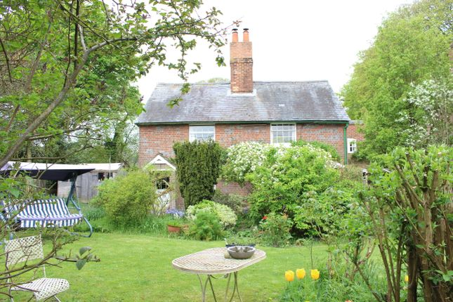 Thumbnail Cottage for sale in Norris Lane, Chaddleworth