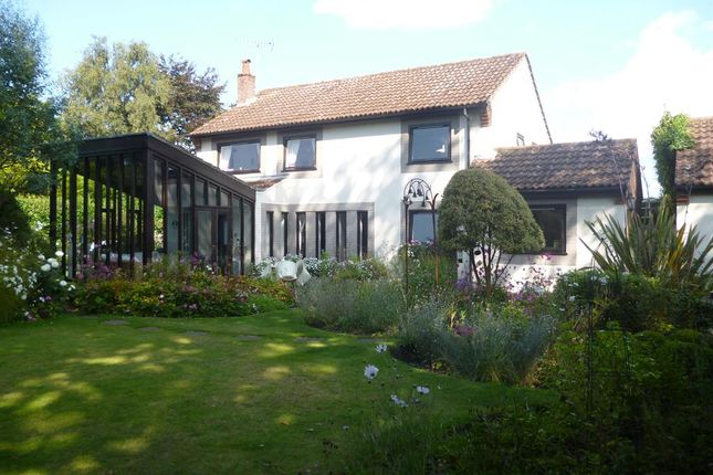 Thumbnail Detached house for sale in Chapel Road, Strumpshaw, Norwich