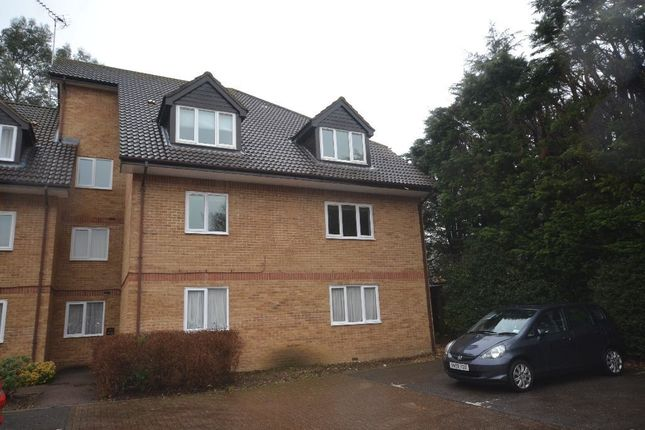 Thumbnail Flat to rent in Rochester Drive, Watford