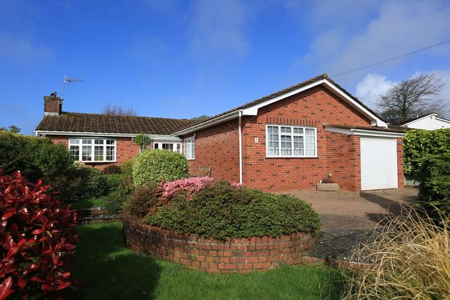 3 bed detached bungalow for sale in James Close, Elburton, Plymouth