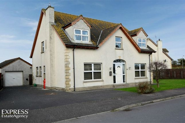 Thumbnail Detached house for sale in 14 Castle Meadow Park, Cloughey, Newtownards, County Down