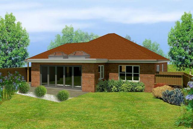 Thumbnail Detached bungalow for sale in Hazel Grove, Clanfield, Waterlooville