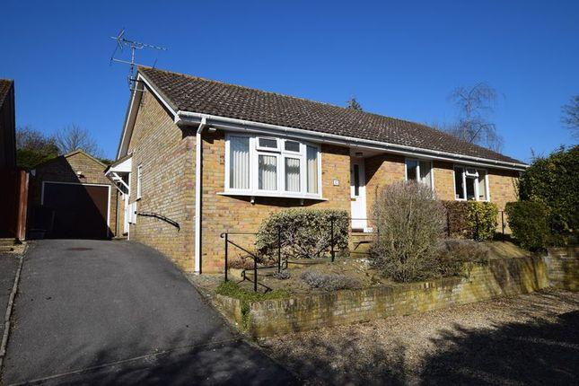 Thumbnail Detached bungalow for sale in Cavalier Way, Alton, Hampshire