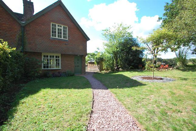 Thumbnail Semi-detached house to rent in Petersfield