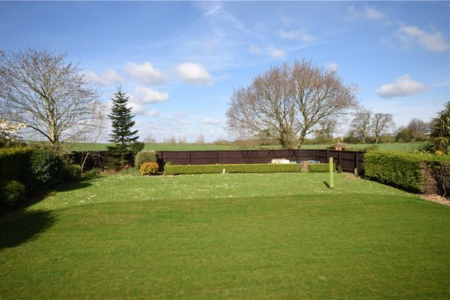 Thumbnail Detached house for sale in Higher Street, Norton Sub Hamdon, Stoke-Sub-Hamdon, Somerset