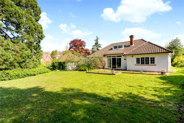 Thumbnail Detached bungalow for sale in Wraylands Drive, Reigate, Surrey