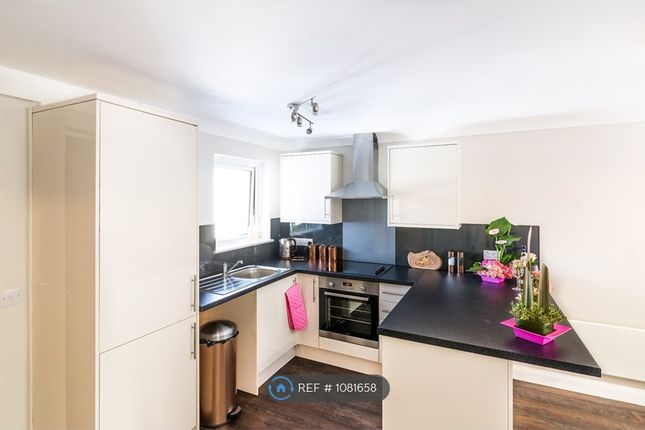 Thumbnail Flat to rent in New Street, Plymouth