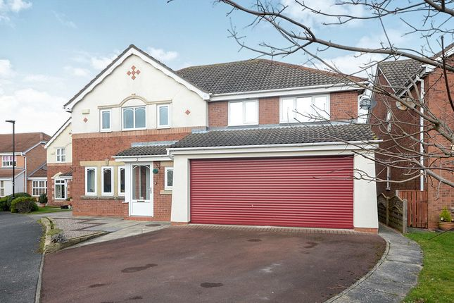 Thumbnail Detached house to rent in Harewood Close, York